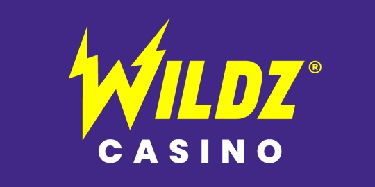 Wildz Casino Logo 200x100